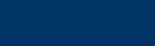Bi logo web 520px